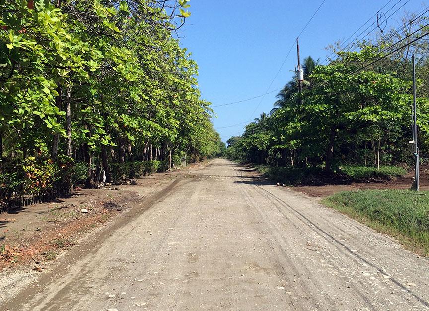 Die Straße von Playa Zancudo