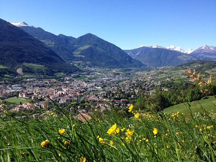 Ausblick auf Brixen von den umliegenden Bergen