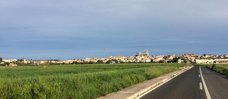 Auf der Landstraße nach Sineu, Mallorca