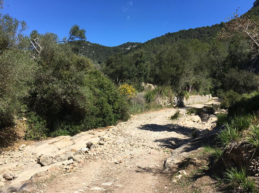 Um zum Avenc de Son Pou zu gelangen, musst du hier  hindurch falls Wasser im Bach ist