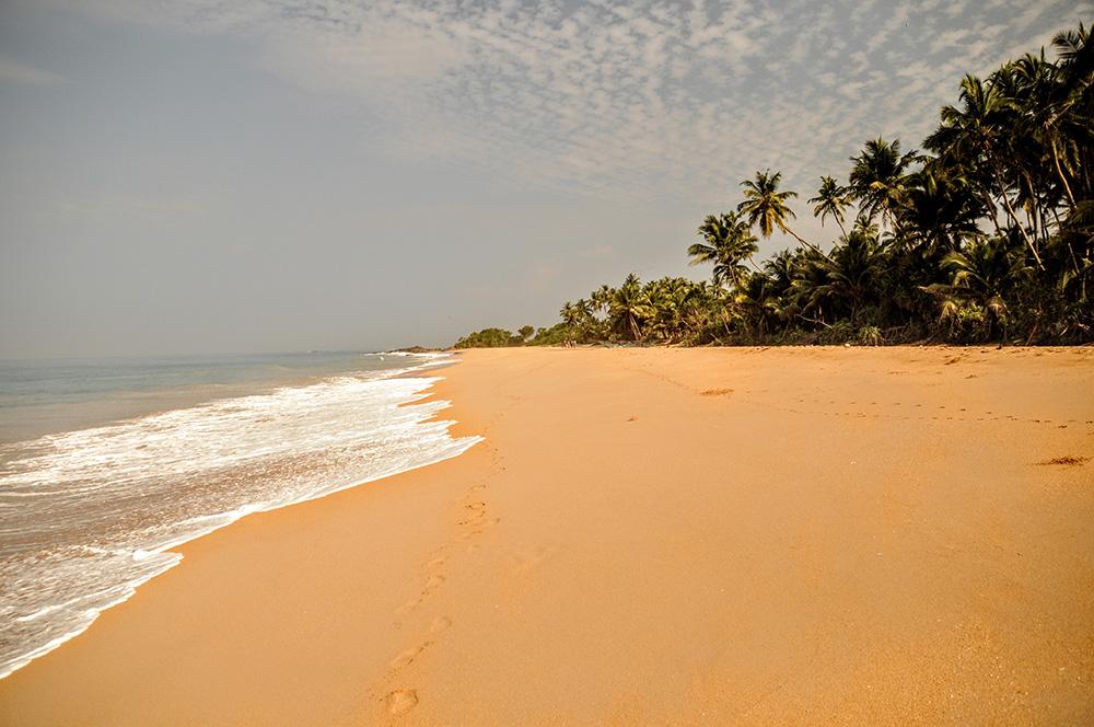 Der Strand von Maha Induruwa, Sri Lanka