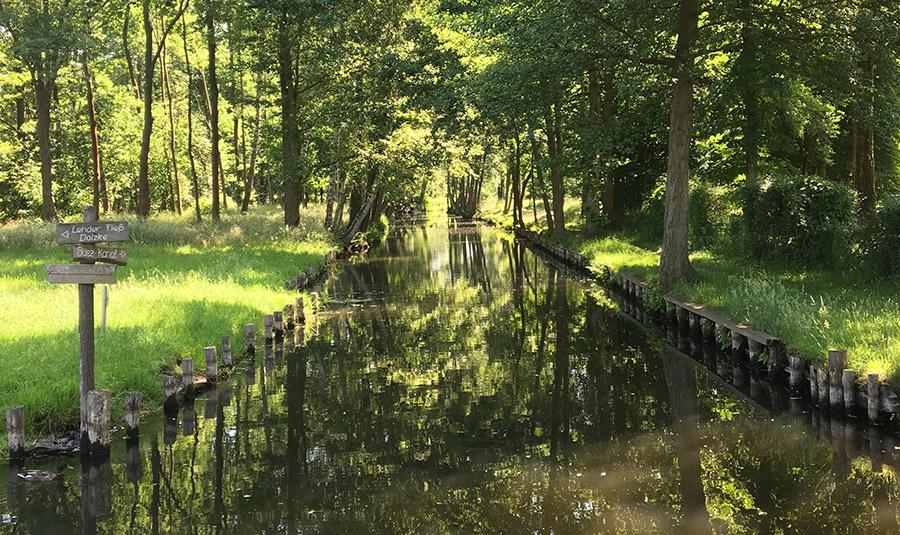 Kanal-Landschaft in Lehde im Spreewald