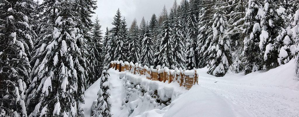 Südtirol im Winter – urige Almhütten und Rodeln