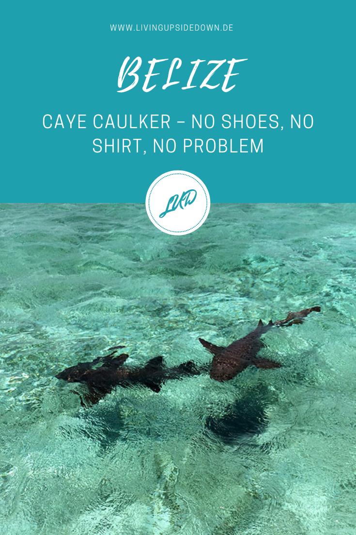 Belize Reise: Hier findest du alle Informationen für deine Reise durch Belize und Tipps für Caye Caulker