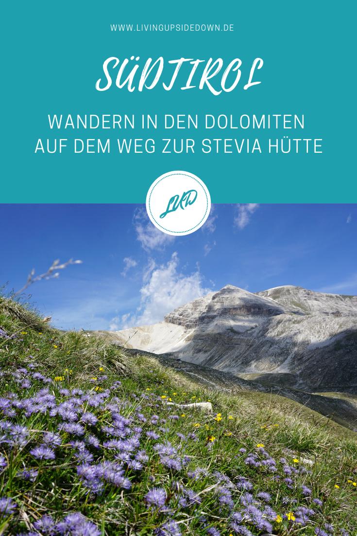Wandern in Südtirol: Schönstes Dolomiten-Panorama auf deiner Bergtour über den Col dala Pieres zur Stevia Hütte